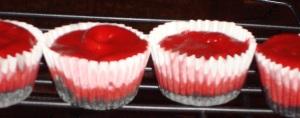 Red Velvet Cheesecakes with Oreo Crust!