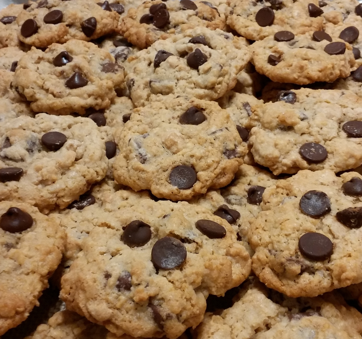 Oatmeal Cookies with Peanut Butter Chips & Chocolate Chunks! – The ...